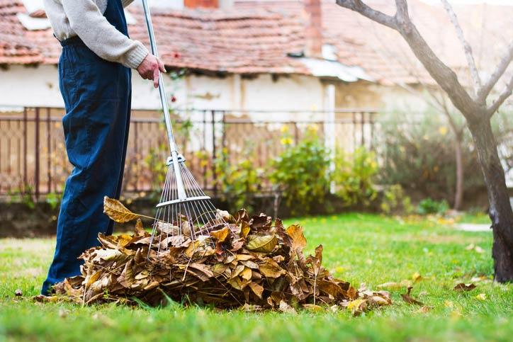 Pessoa varrendo o jardim com a vassoura certa para esse ambiente