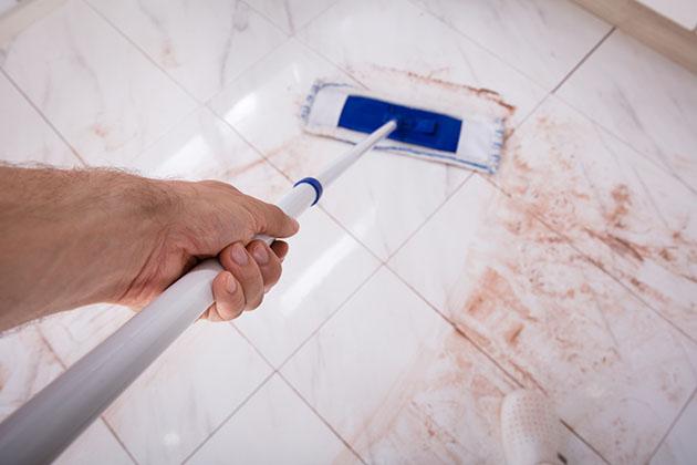 Rodo é capaz de limpar piso encardido